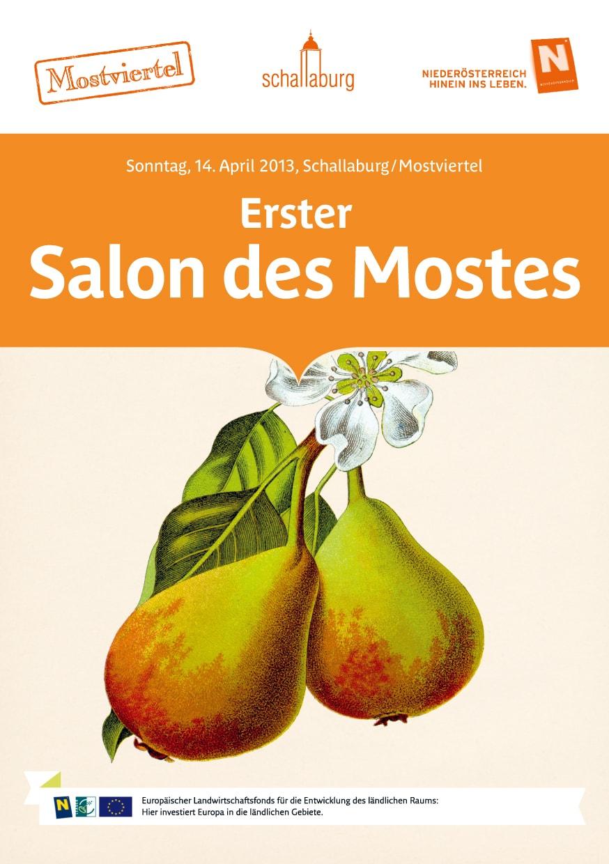 Erster Salon des Mostes, 2013