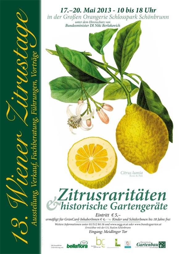 ZitrusPlakat2013_Web