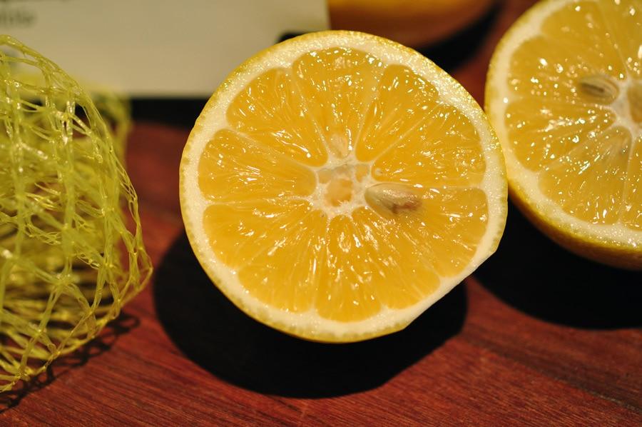 meyer-lemons-6963